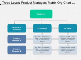 Three Levels Product Managers Matrix Org Chart Template