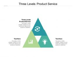 Three Levels Product Service Ppt Powerpoint Presentation Infographics Professional Cpb