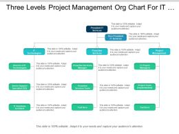 Three Levels Project Management Org Chart For It Company