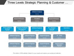 Three Levels Strategic Planning And Customer Service Software Org Chart