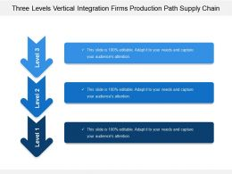Three Levels Vertical Integration Firms Production Path Supply Chain