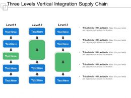 Three Levels Vertical Integration Supply Chain