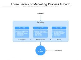 Three Levers Of Marketing Process Growth