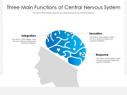 Three Main Functions Of Central Nervous System