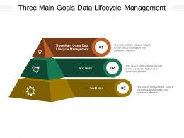 Three Main Goals Data Lifecycle Management Ppt Powerpoint Presentation Infographic Cpb