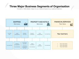Three Major Business Segments Of Organisation