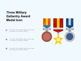 Three Military Gallantry Award Medal Icon