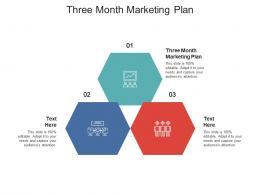 Three Month Marketing Plan Ppt Powerpoint Presentation Portfolio Infographic Template Cpb