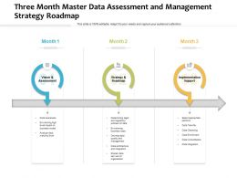 Three Month Master Data Assessment And Management Strategy Roadmap