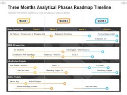Three Months Analytical Phases Roadmap Timeline