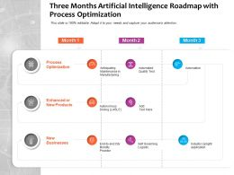 Three Months Artificial Intelligence Roadmap With Process Optimization