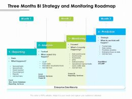 Three Months BI Strategy And Monitoring Roadmap