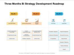 Three Months Bi Strategy Development Roadmap