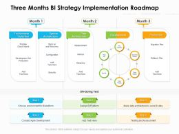 Three Months BI Strategy Implementation Roadmap