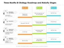 Three Months BI Strategy Roadmap And Maturity Stages