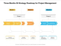 Three Months Bi Strategy Roadmap For Project Management