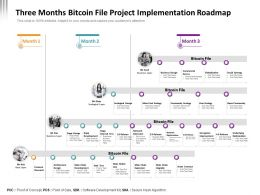 Three Months Bitcoin File Project Implementation Roadmap