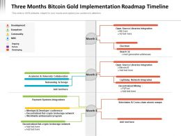 Three Months Bitcoin Gold Implementation Roadmap Timeline