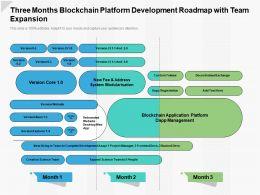 Three Months Blockchain Platform Development Roadmap With Team Expansion