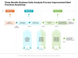 Three Months Business Data Analysis Process Improvement Best Practices Roadmap