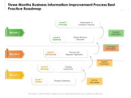 Three Months Business Information Improvement Process Best Practice Roadmap