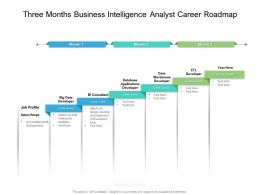 Three Months Business Intelligence Analyst Career Roadmap