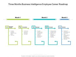 Three Months Business Intelligence Employee Career Roadmap