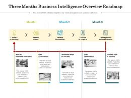 Three Months Business Intelligence Overview Roadmap