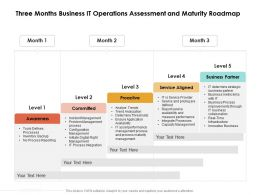 Three Months Business IT Operations Assessment And Maturity Roadmap