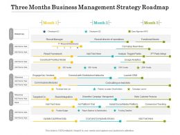 Three Months Business Management Strategy Roadmap