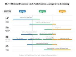 Three Months Business Unit Performance Management Roadmap