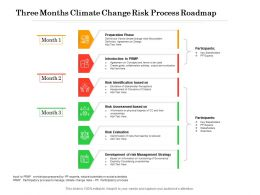 Three Months Climate Change Risk Process Roadmap
