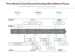 Three Months Clinical Research Roadmap With Different Phases