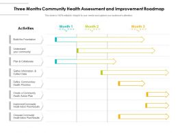 Three Months Community Health Assessment And Improvement Roadmap