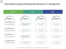 Three Months Company Roadmap With Elements Of IT Management