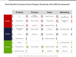 Three Months Company Teams Progress Roadmap With CRM Development