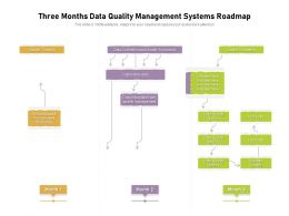Three Months Data Quality Management Systems Roadmap