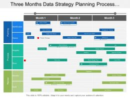 Three Months Data Strategy Planning Process Review Timeline