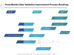 Three Months Data Validation Improvement Process Roadmap