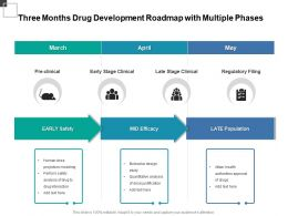 Three Months Drug Development Roadmap With Multiple Phases