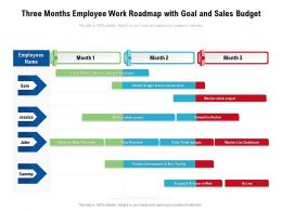 Three Months Employee Work Roadmap With Goal And Sales Budget