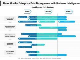 Three Months Enterprise Data Management With Business Intelligence