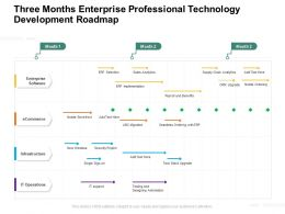 Three Months Enterprise Professional Technology Development Roadmap