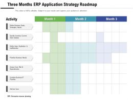 Three Months ERP Application Strategy Roadmap