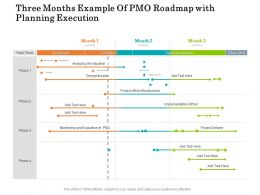 Three Months Example Of PMO Roadmap With Planning Execution