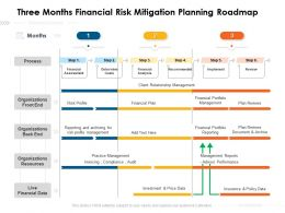 Three Months Financial Risk Mitigation Planning Roadmap