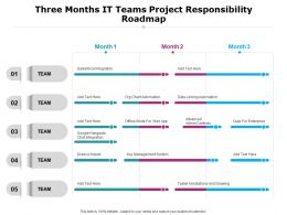 Three Months It Teams Project Responsibility Roadmap