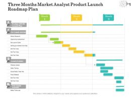 Three Months Market Analyst Product Launch Roadmap Plan