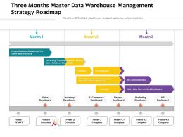 Three Months Master Data Warehouse Management Strategy Roadmap