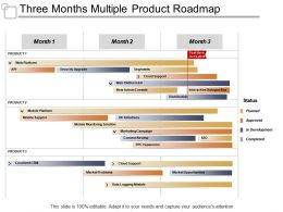 Three Months Multiple Product Roadmap